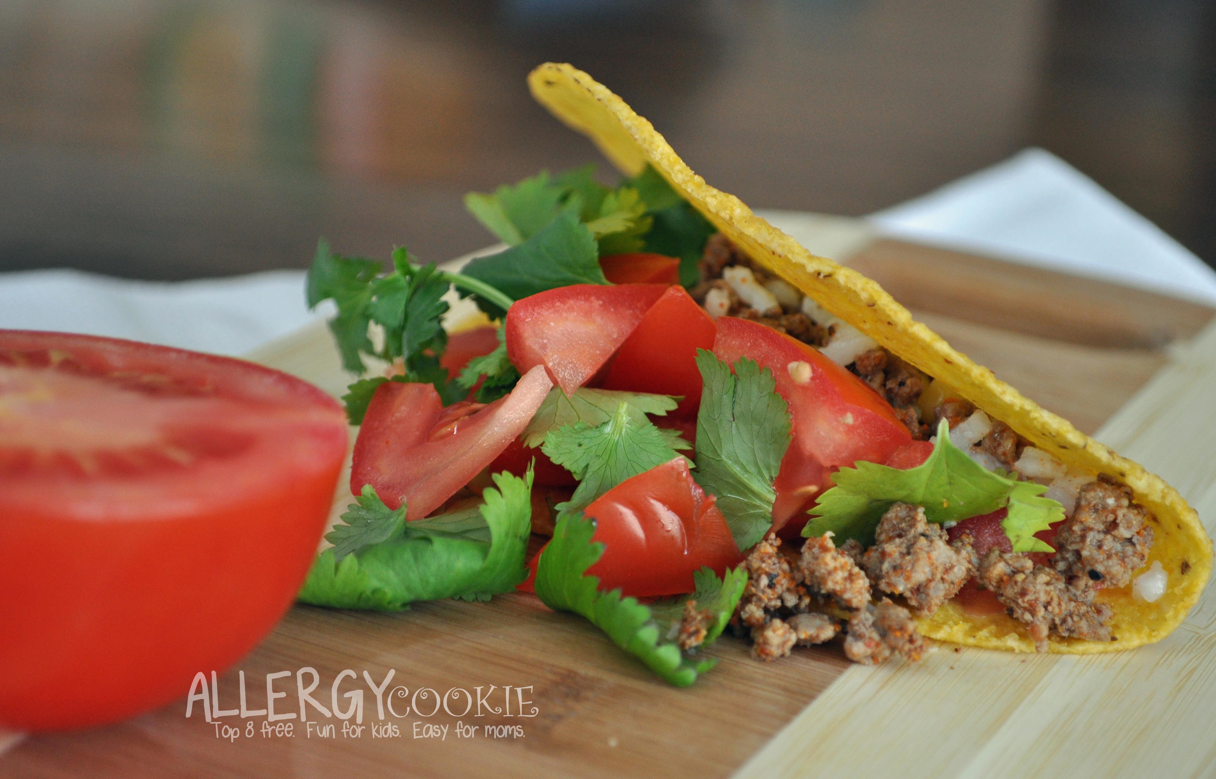 Taco Seasoning Recipe (top 8 free, gluten free, vegan)