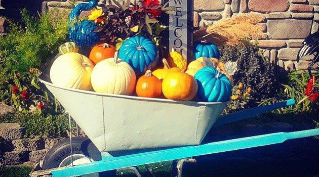 How One Small Teal Pumpkin Has Made a Big Difference to Many