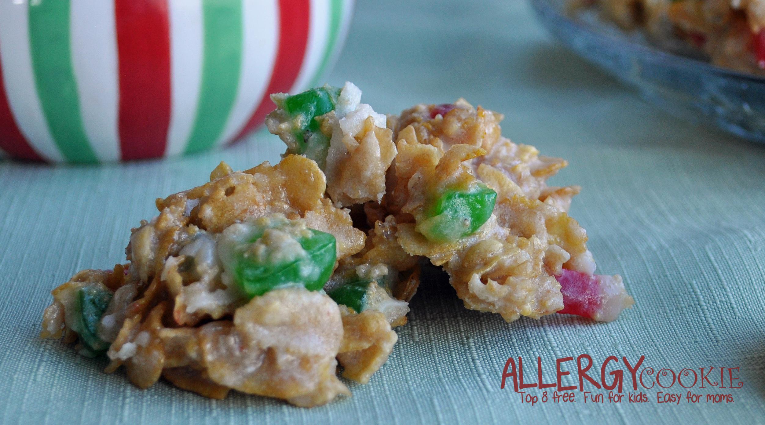 Holiday Fruitcake No Bake Cookies Gluten Free Vegan Top 8 Free