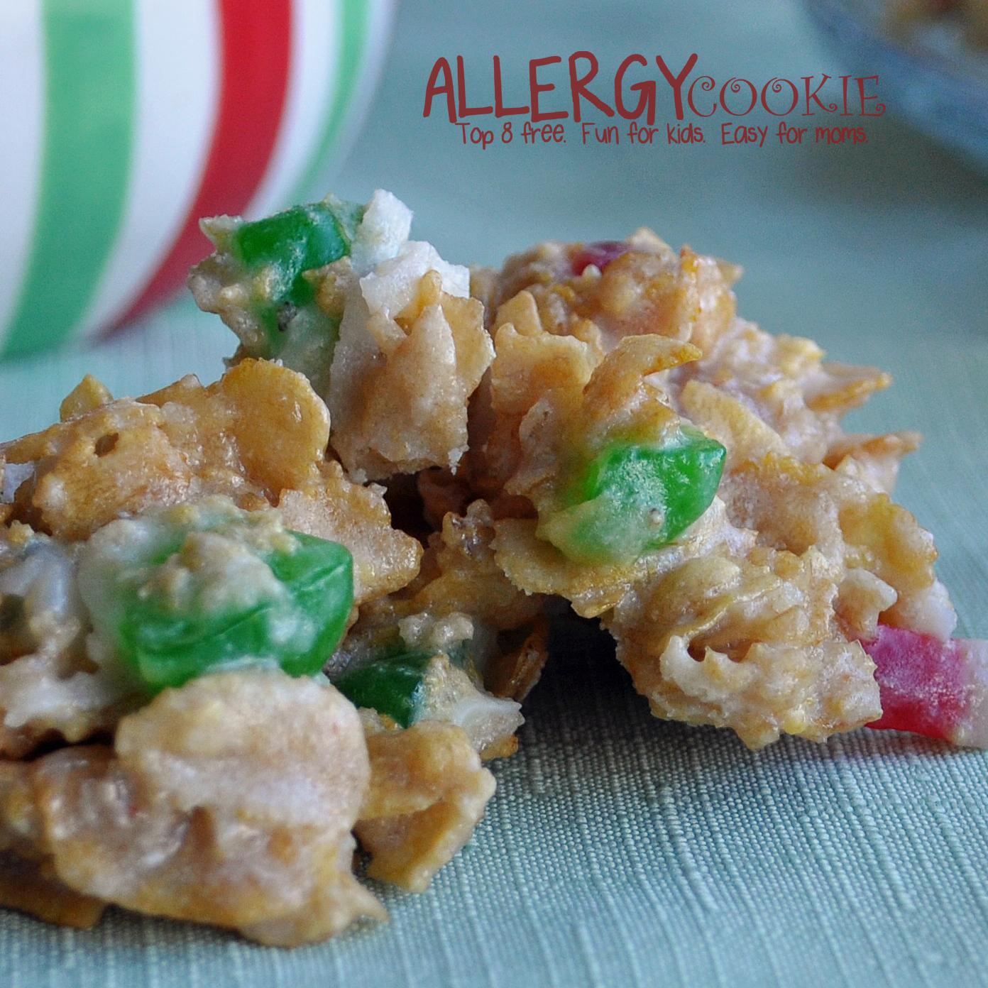 Holiday Fruitcake No Bake Cookies (gluten free, vegan, top 8 free)
